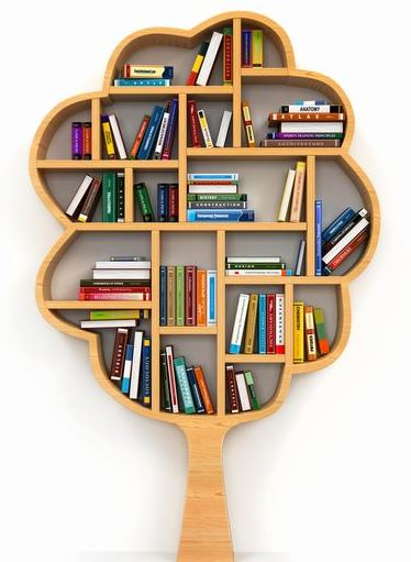 کتابخانه و قفسه کتاب